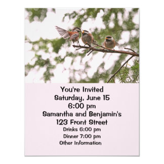 """Baby Chickadees and Mother Bird 4.25"""" X 5.5"""" Invitation Card"""