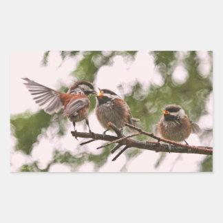 Baby Chickadees and Mother Bird Rectangular Sticker