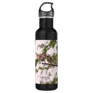 Baby Chickadees and Mother Bird Water Bottle