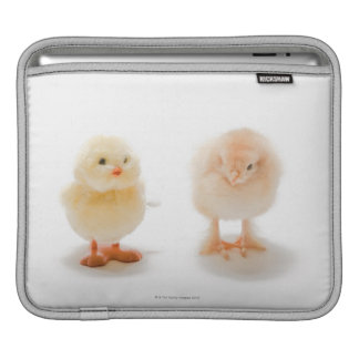 Baby chicken and fake mechanical chicken sleeve for iPads