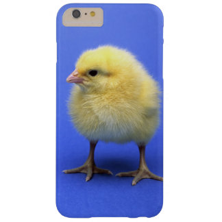 Baby chicken. barely there iPhone 6 plus case