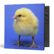 Baby chicken. binder