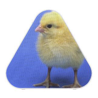 Baby chicken. bluetooth speaker
