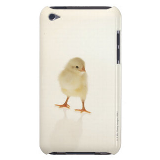 Baby chicken Case-Mate iPod touch case