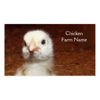 Baby Chicken Egg or Chicken Farm Double-Sided Standard Business Cards (Pack Of 100)