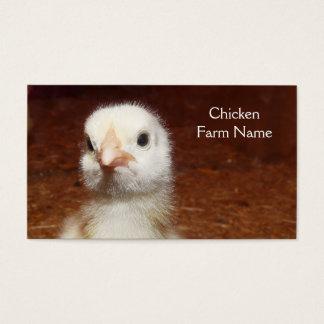 Baby Chicken Egg or Chicken Farm Business Card