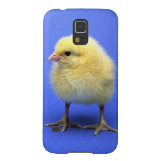 Baby chicken. galaxy s5 cover