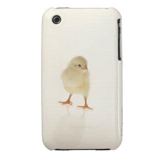 Baby chicken iPhone 3 cases