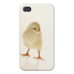 Baby chicken iPhone 4 case