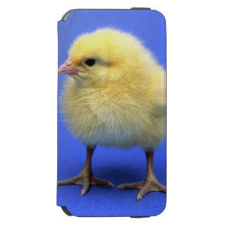 Baby chicken. iPhone 6/6s wallet case