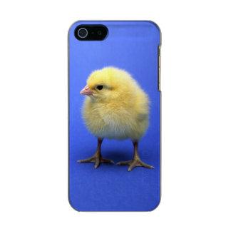Baby chicken. metallic iPhone SE/5/5s case