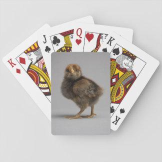 Baby Chicken Poker Deck