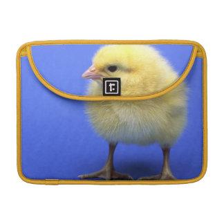 Baby chicken. sleeve for MacBooks