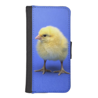 Baby chicken. wallet phone case for iPhone SE/5/5s