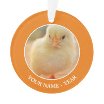 Baby Chicks Ornament