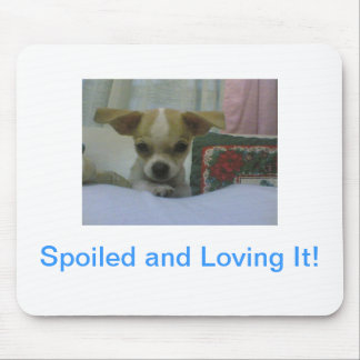 Baby Chihuahua Puppy Mouse Pad