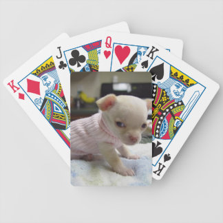 Baby Chihuahua Puppy Pink Sweater Playing Cards