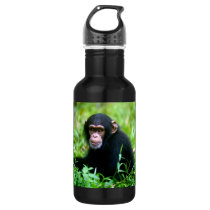Baby Chimp in Grass Stainless Steel Water Bottle