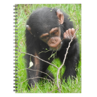 Baby Chimp Notebook