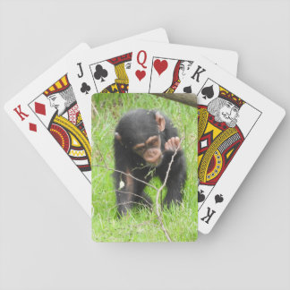 Baby Chimp Playing Cards