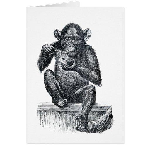 Baby chimpanzee monkey vintage drawing card | Zazzle