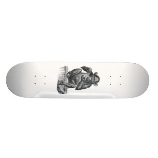 Baby chimpanzee monkey vintage drawing skateboard