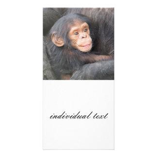 baby chimpanzeeh photo card