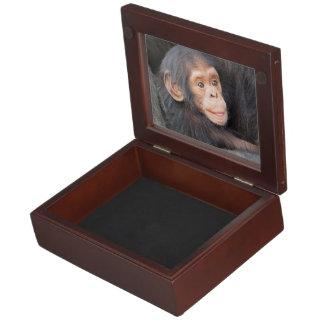 baby chimpanzeeh keepsake box