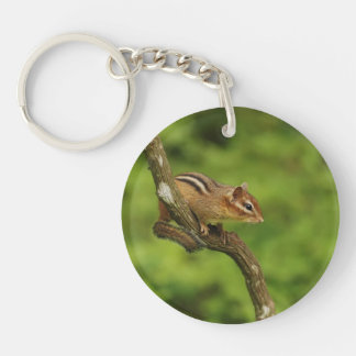 Baby Chipmunk in a Tree Single-Sided Round Acrylic Keychain