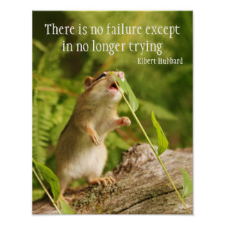 Baby Chipmunk Try Quote Print