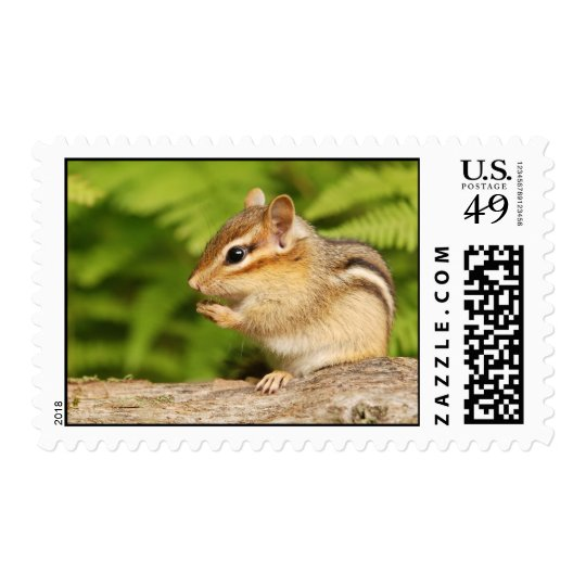 Baby Chipmunk with Acorn Snack Postage