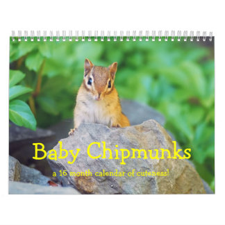 Baby Chipmunks 2014/2015 (16 month calendar) Calendar