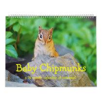 Baby Chipmunks 2016/2017 (16 month calendar) Calendar