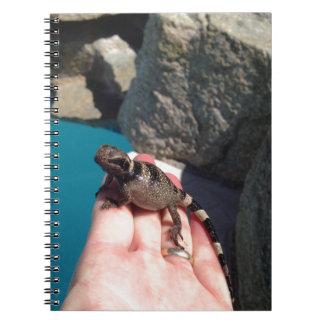 Baby Chuckwala Notebook