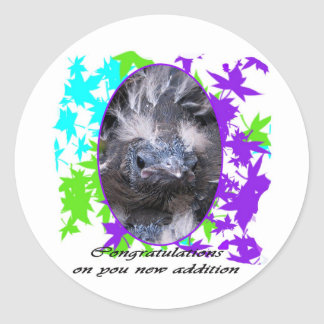 Baby Congratulations: Congratulations baby Classic Round Sticker