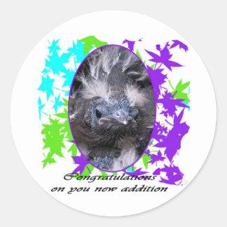 Baby Congratulations: Congratulations baby Stickers