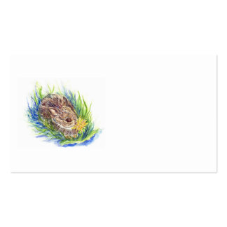 Baby Cottontail, watercolor pencil Business Cards