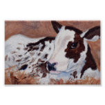 Baby Cow aceo Print