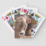 Baby Cow - Brown Baby Calf Close Up Face Bicycle Playing Cards