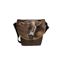 Baby Cow - Brown Baby Calf Close Up Face Courier Bag