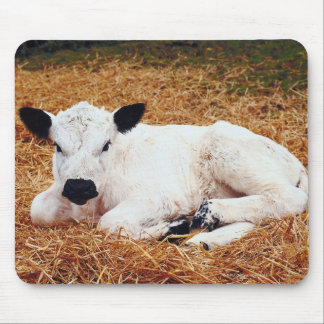 Baby Cow, Calf Mouse Pad