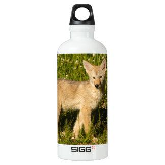 baby coyote aluminum water bottle