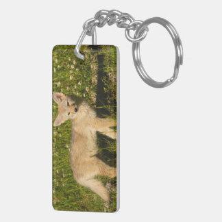 baby coyote keychain