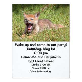 Baby Coyote Yawning Card