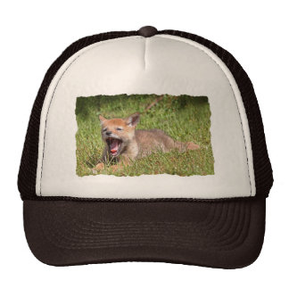 Baby Coyote Yawning Trucker Hat
