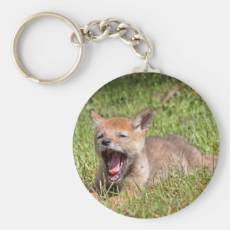 Baby Coyote Yawning Key Chains