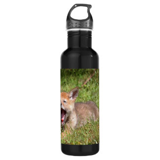Baby Coyote Yawning Water Bottle