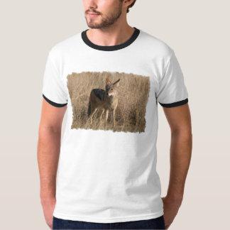 Baby Coyotes Men's T-Shirt