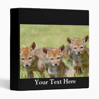 Baby Coyotes Photo 3 Ring Binder