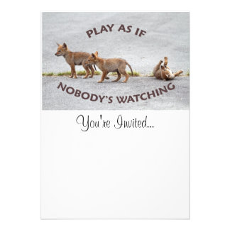 Baby Coyotes Playing Personalized Announcement
